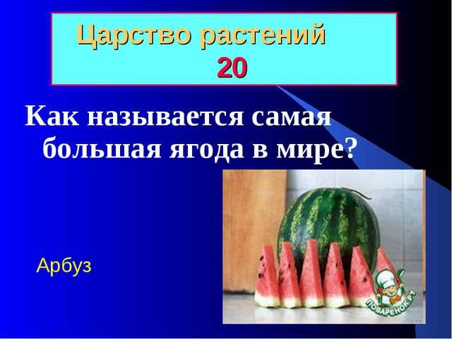 Царство растений 20 Как называется самая большая ягода в мире? Арбуз
