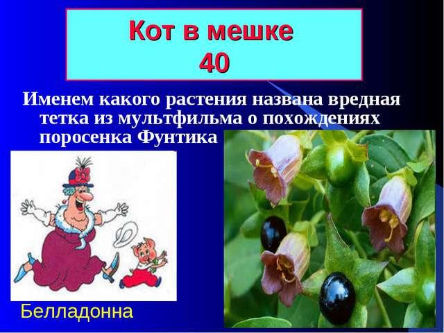 Кот в мешке 40 Именем какого растения названа вредная тетка из мультфильма о...