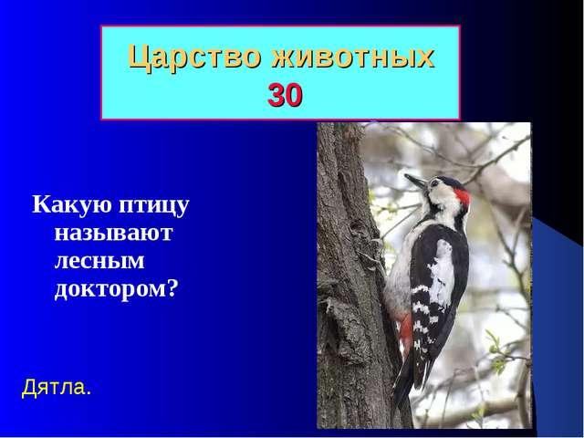 Царство животных 30 Какую птицу называют лесным доктором? Дятла.