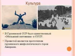 Культура В Грузинской ССР был единственный «Обезьяний питомник» в СССР. Про