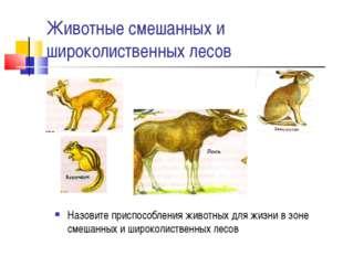 Животные смешанных и широколиственных лесов Назовите приспособления животных