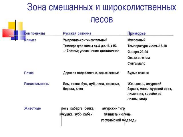 Зона смешанных и широколиственных лесов компонентыРусская равнинаПриморье...