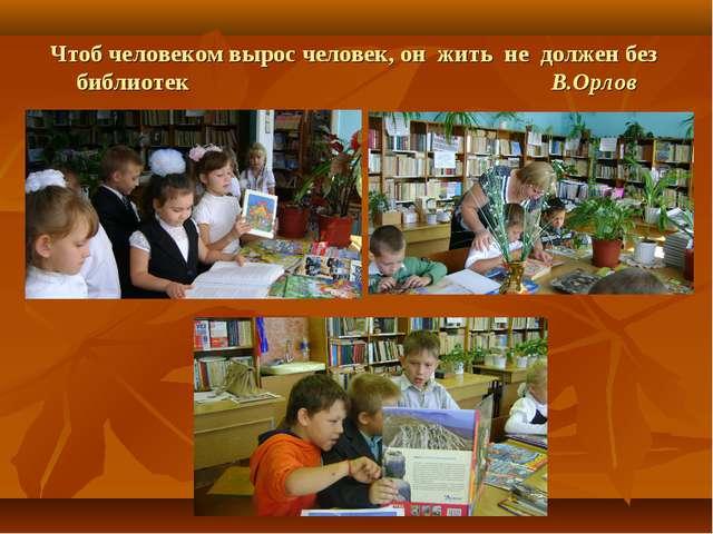 Чтоб человеком вырос человек, он жить не должен без библиотек В.Орлов