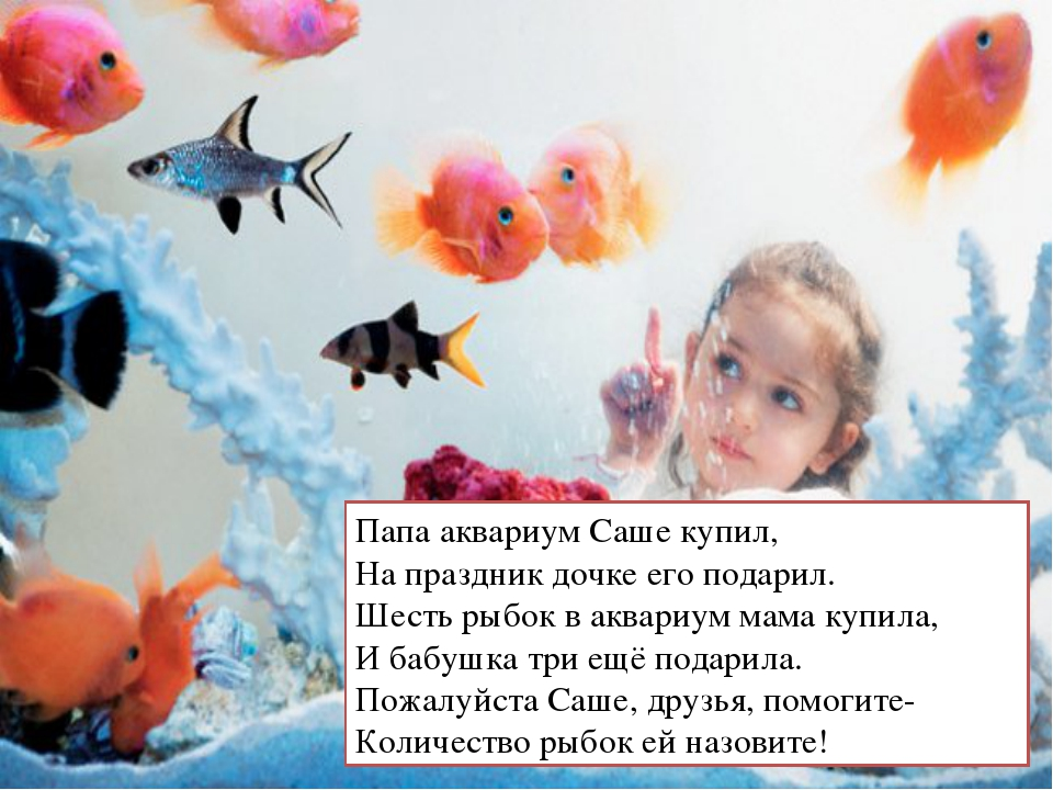 Папа аквариум Саше купил, На праздник дочке его подарил. Шесть рыбок в аквари...