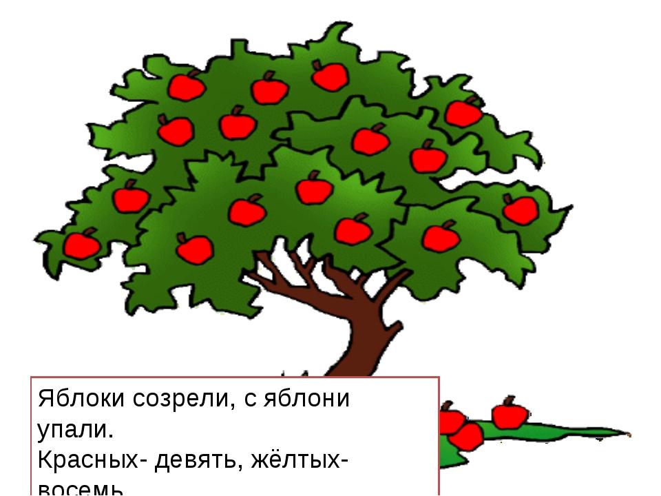 Яблоки созрели, с яблони упали. Красных- девять, жёлтых- восемь. «Сколько их...