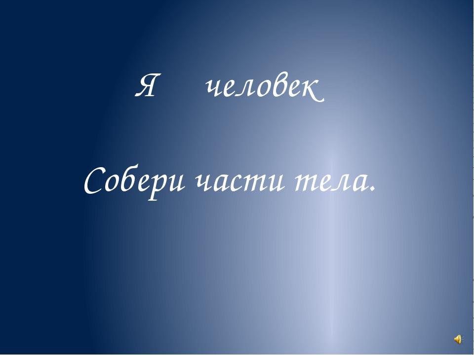 Я человек Собери части тела.