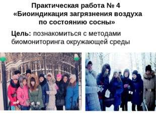 Практическая работа № 4 «Биоиндикация загрязнения воздуха по состоянию сосны»