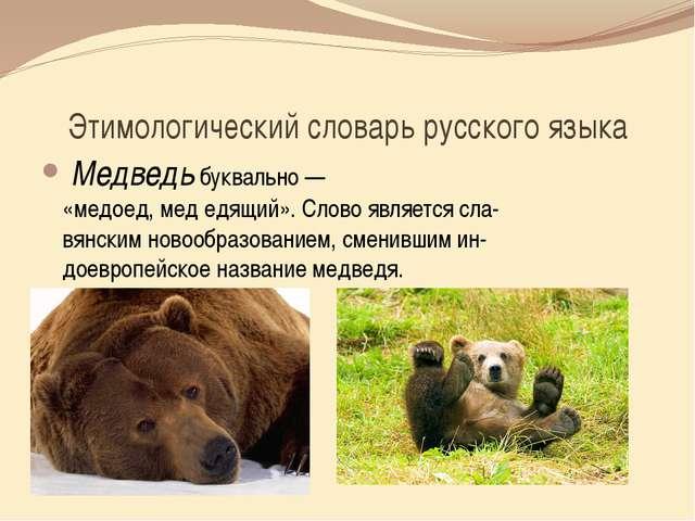 Этимологический словарь русского языка Медведьбуквально— «медоед,медедящ...