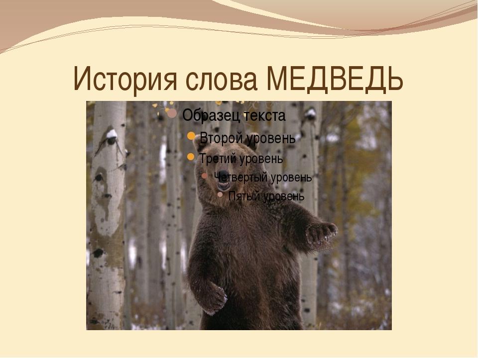 История слова МЕДВЕДЬ