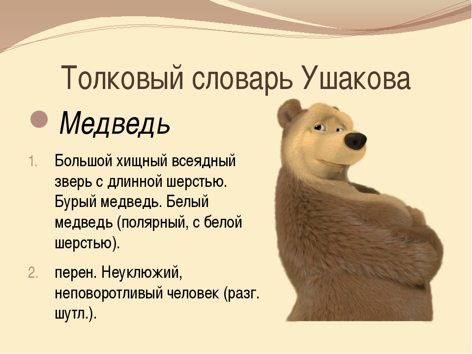 Толковый словарь Ушакова Медведь  Большой хищный всеядный зверь с длинной ше...