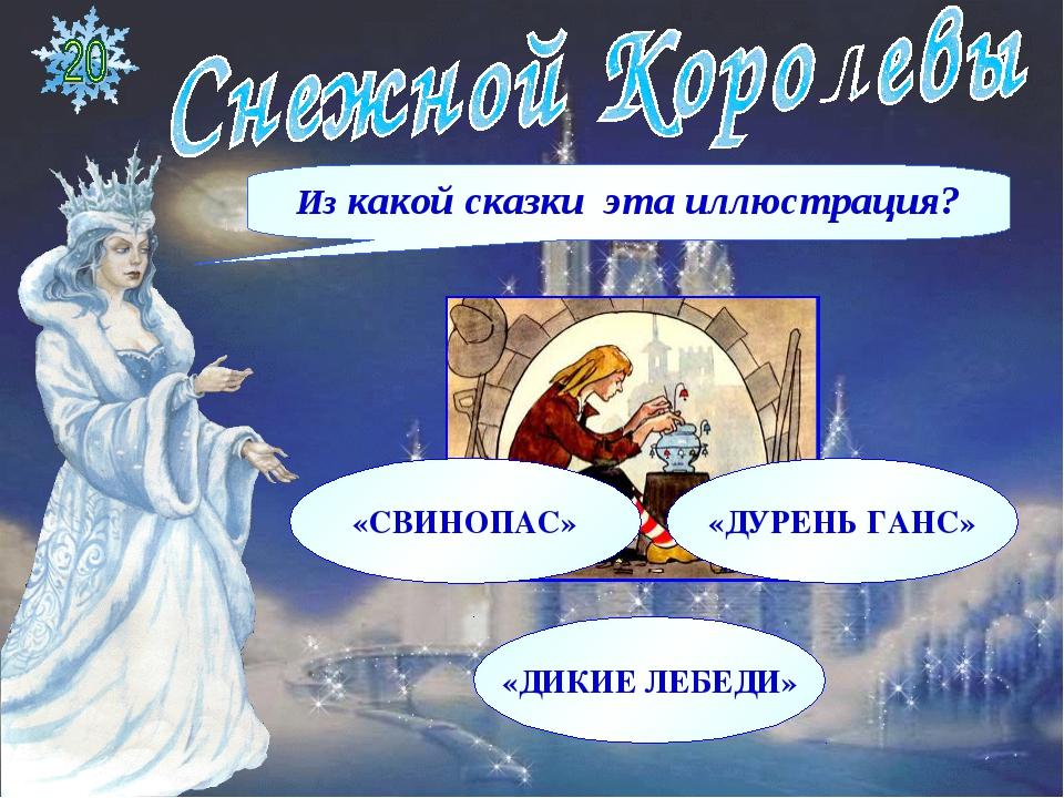 Из какой сказки эта иллюстрация? «СВИНОПАС» «ДУРЕНЬ ГАНС» «ДИКИЕ ЛЕБЕДИ»