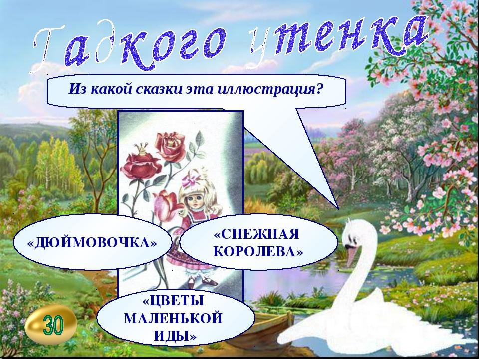 Из какой сказки эта иллюстрация? «ДЮЙМОВОЧКА» «СНЕЖНАЯ КОРОЛЕВА» «ЦВЕТЫ МАЛЕН...