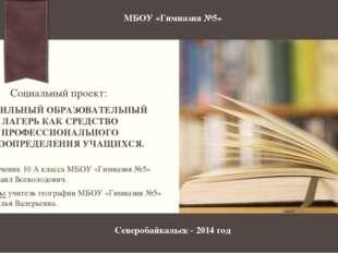 Руководитель: учитель географии МБОУ «Гимназии №5» Фролова Наталья Валерьевна
