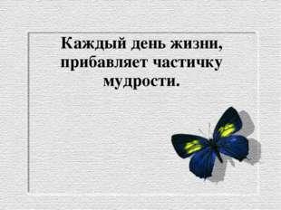 Каждый день жизни, прибавляет частичку мудрости.