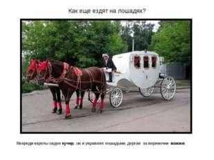 Как еще ездят на лошадях? Впереди кареты сидел кучер, он и управлял лошадьми,