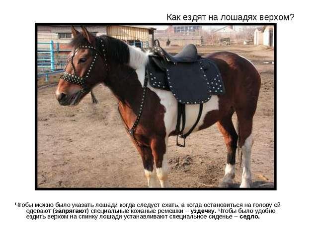 Как ездят на лошадях верхом? Чтобы можно было указать лошади когда следует ех...