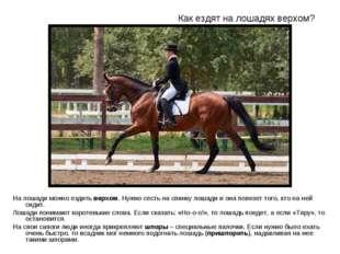 Как ездят на лошадях верхом? На лошади можно ездить верхом. Нужно сесть на сп