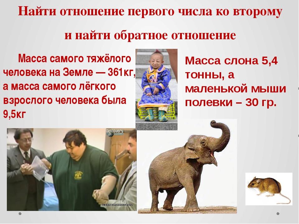Как вам новые фото сына Стаса Пьехи и Натальи Горчаковой?