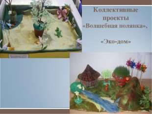 Коллективные проекты «Волшебная полянка», «Эко-дом»