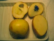 иодное пятно на срезе картофеля заметно ярче, чем на яблоке - значит, в картофеле крахмала больше