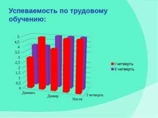 Успеваемость по трудовому обучению: