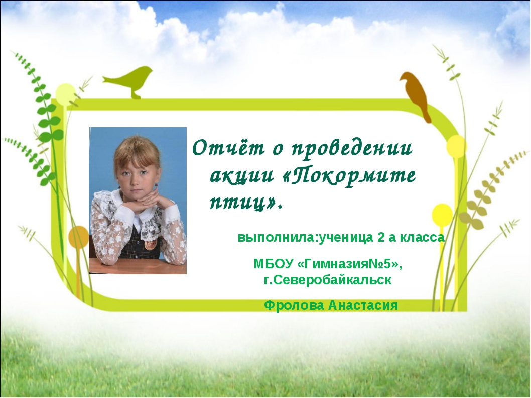 Отчёт о проведении акции «Покормите птиц». выполнила:ученица 2 а класса МБОУ...