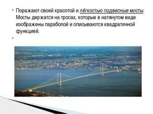 Поражают своей красотой и лёгкостью подвесные мосты. Мосты держатся на тросах