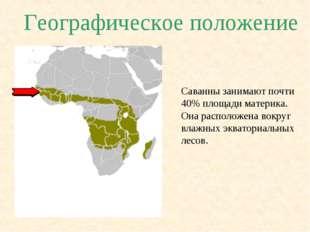 Географическое положение Саванны занимают почти 40% площади материка. Она рас