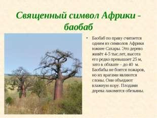 Священный символ Африки - баобаб Баобаб по праву считается одним из символов