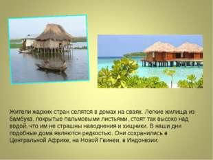 Жители жарких стран селятся в домах на сваях. Легкие жилища из бамбука, покры