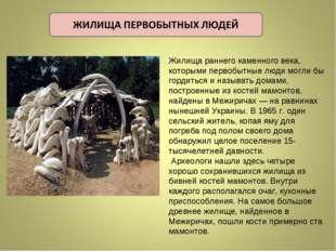 Жилища раннего каменного века, которыми первобытные люди могли бы гордиться