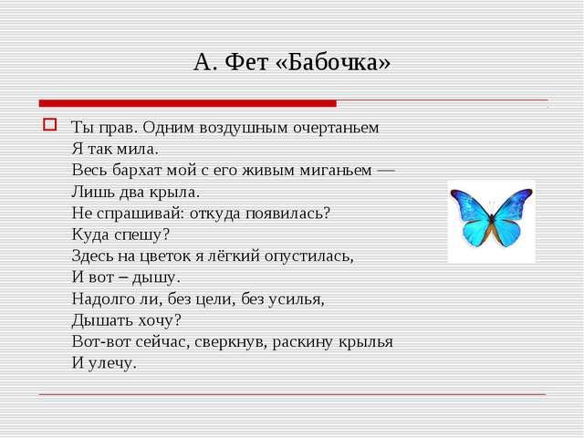 А. Фет «Бабочка» Ты прав. Одним воздушным очертаньем Я так мила. Весь бархат...