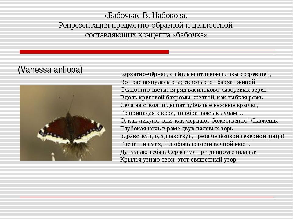«Бабочка» В. Набокова. Репрезентация предметно-образной и ценностной составля...