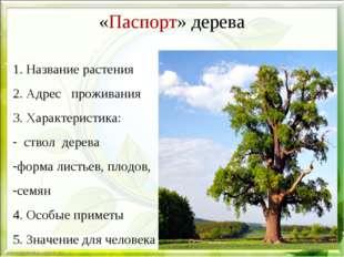 «Паспорт» дерева 1. Название растения 2. Адрес проживания 3. Характеристика: