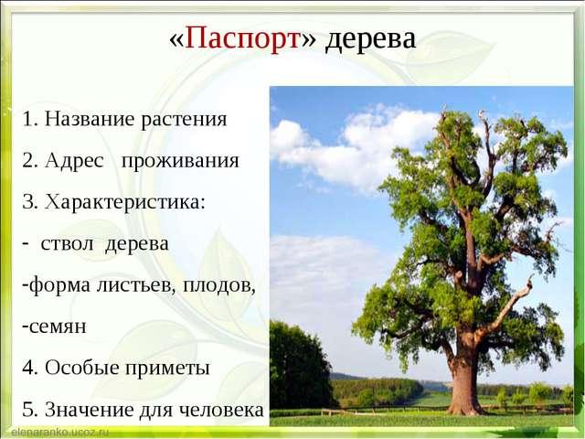 «Паспорт» дерева 1. Название растения 2. Адрес проживания 3. Характеристика:...