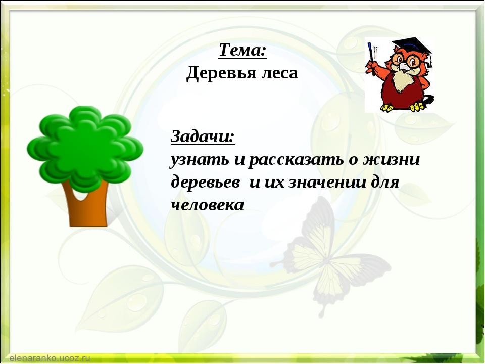 Тема: Деревья леса Задачи: узнать и рассказать о жизни деревьев и их значени...