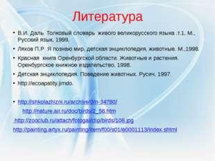 Литература В.И. Даль Толковый словарь живого великорусского языка .т.1, М., Р