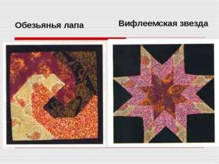 Обезьянья лапа Вифлеемская звезда