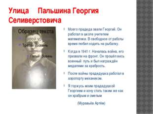 Улица Пальшина Георгия Селиверстовича Моего прадеда звали Георгий. Он работал