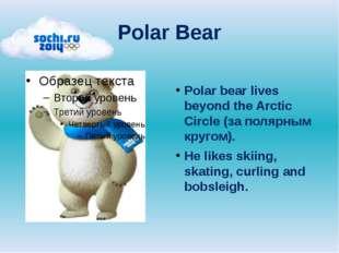 Polar Bear Polar bear lives beyond the Arctic Circle (за полярным кругом). He