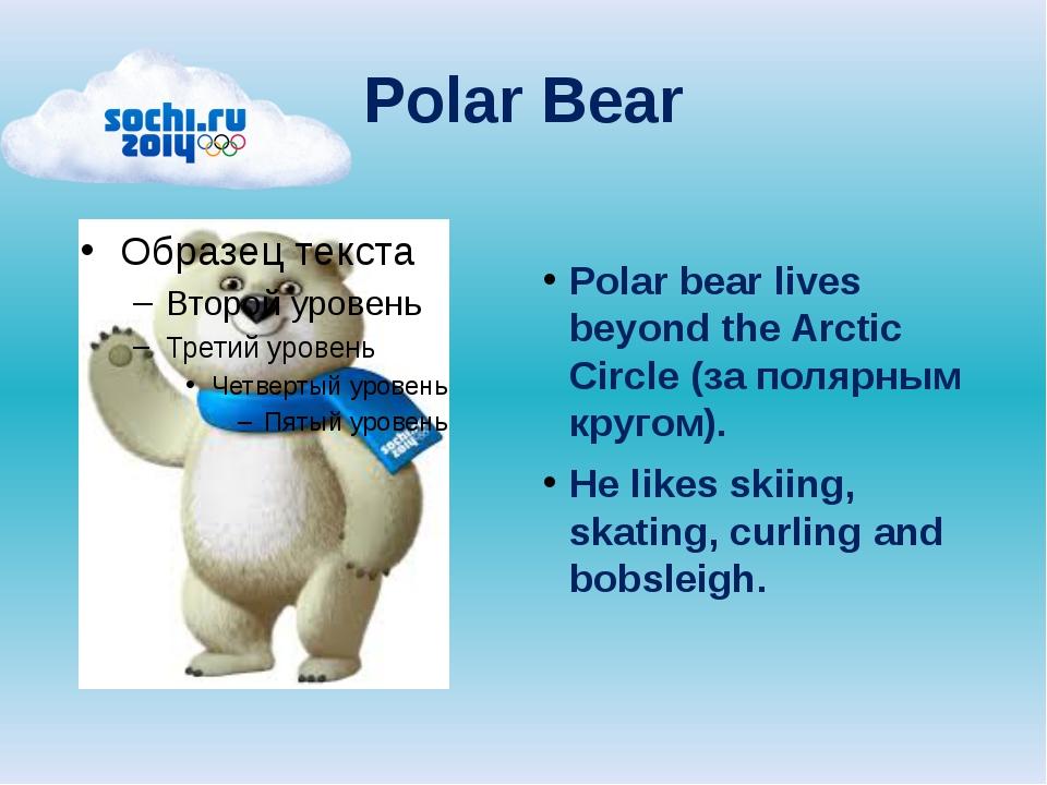 Polar Bear Polar bear lives beyond the Arctic Circle (за полярным кругом). He...