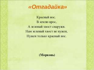 «Отгадайка» Красный нос. В землю врос, А зеленый хвост снаружи. Нам зеленый х
