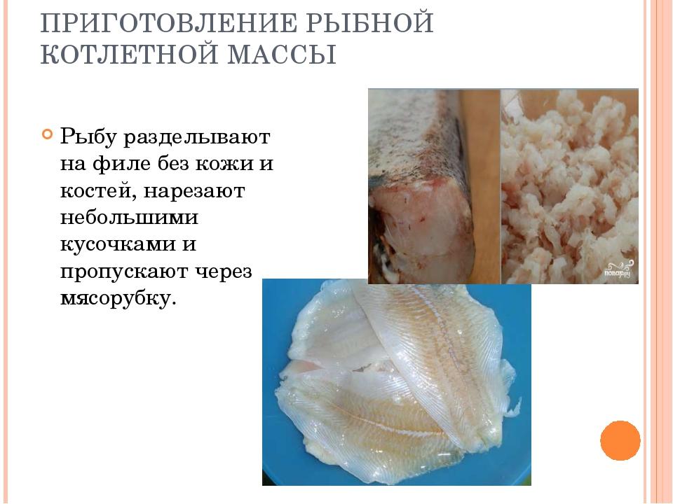 ПРИГОТОВЛЕНИЕ РЫБНОЙ КОТЛЕТНОЙ МАССЫ Рыбу разделывают на филе без кожи и кост...