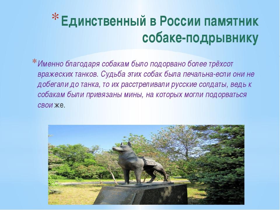 Единственный в России памятник собаке-подрывнику Именно благодаря собакам был...