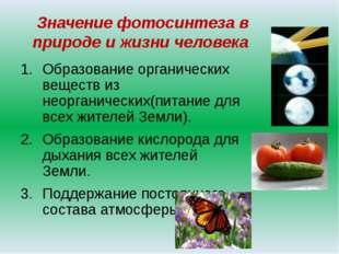 Значение фотосинтеза в природе и жизни человека Образование органических веще