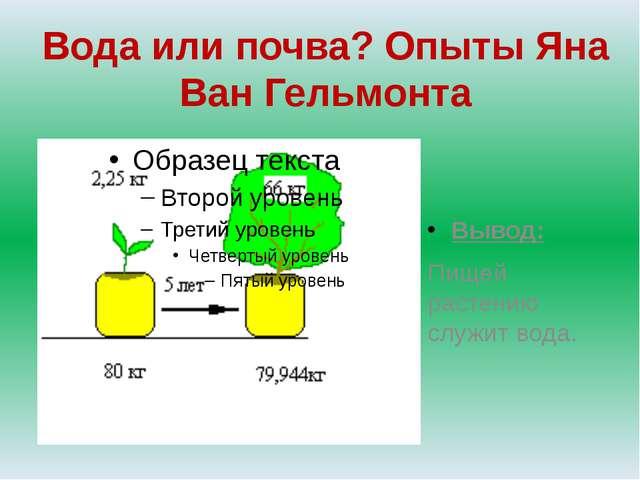 Вода или почва? Опыты Яна Ван Гельмонта Вывод: Пищей растению служит вода.