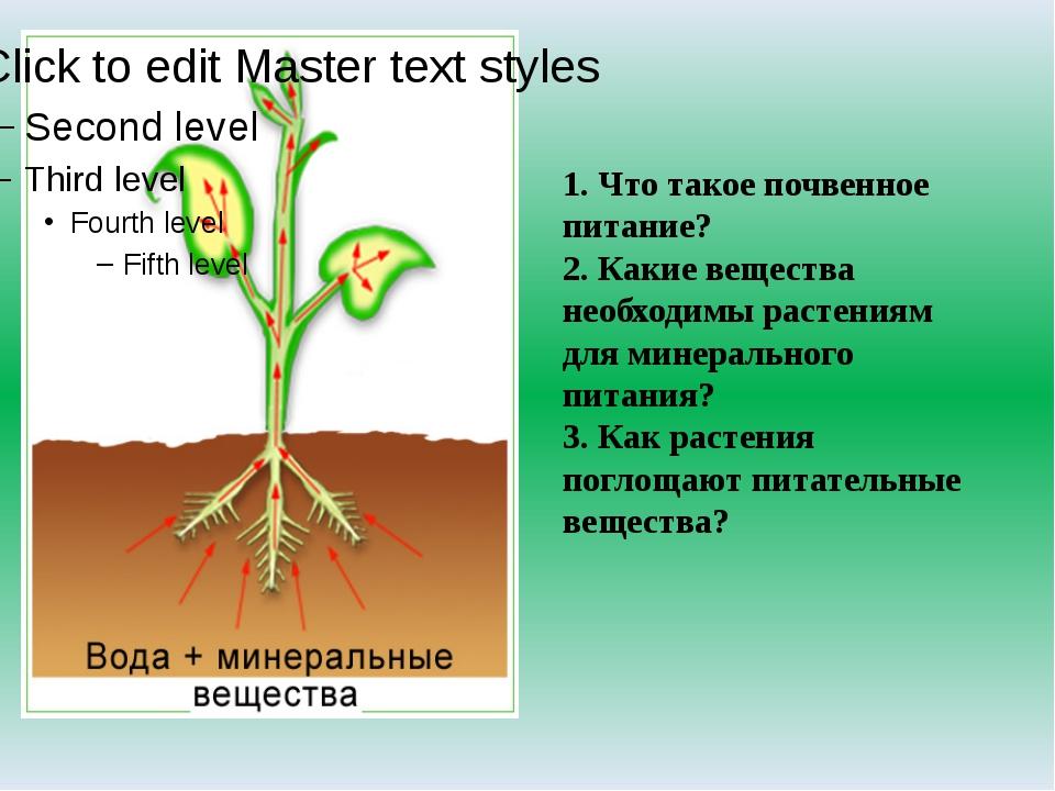 1. Что такое почвенное питание? 2. Какие вещества необходимы растениям для ми...
