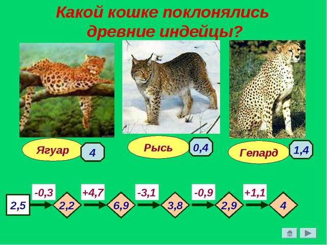 Какой кошке поклонялись древние индейцы? Гепард Ягуар Рысь 2,5 -0,3 -3,1 -0,9...