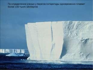 По определению ученых у берегов Антарктиды одновременно плавает более 100 тыс