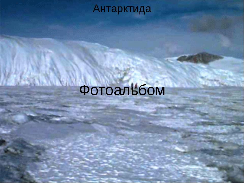 Фотоальбом Антарктида